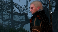 Witcher 3: Wild Hunt Плывем по Острову Туманов! 16